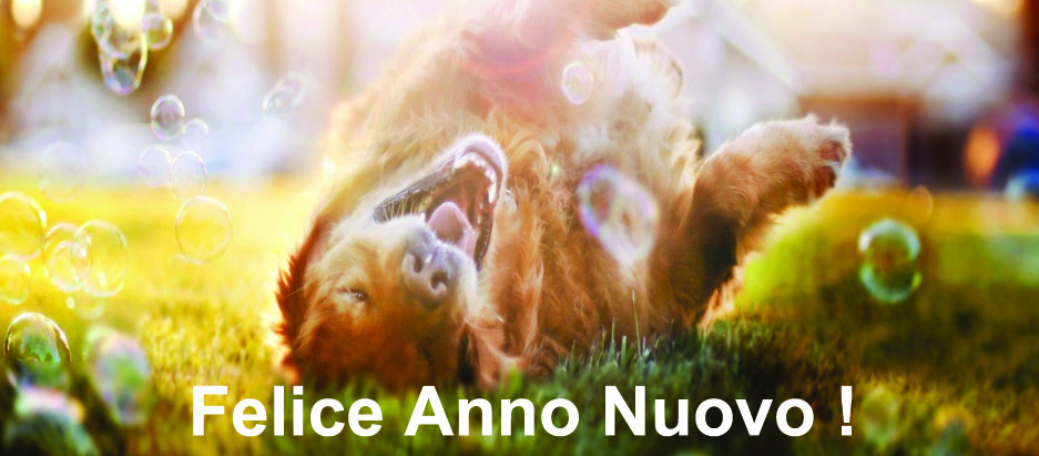 Felice_Anno_Nuovo